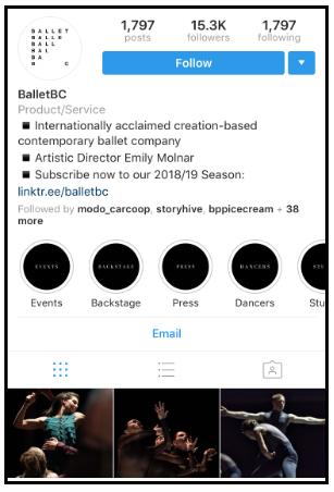 Otimização de bio de instagram